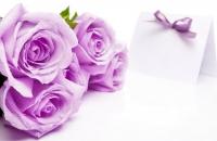 Афиша: «8 Марта на планете женщин»
